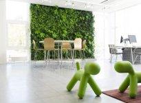 2010-05-indoor-plant-walls-1