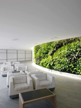 Modern-longue-decorated-with-a-green-wall-1023x1364