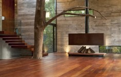 Interior-With-Tree-Ideas-on-Modern-House-Design-that-Interact-Directly-with-Trees-Corallo-House-in-Guatemala