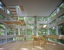 Ring-House-interiors-forest-inside