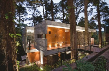 Romantic-Lighting-Ideas-at-Modern-House-Design-that-Interact-Directly-with-Trees-Corallo-House-in-Guatemala