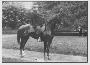 President S Horses Archway Equestrian Sports Llc