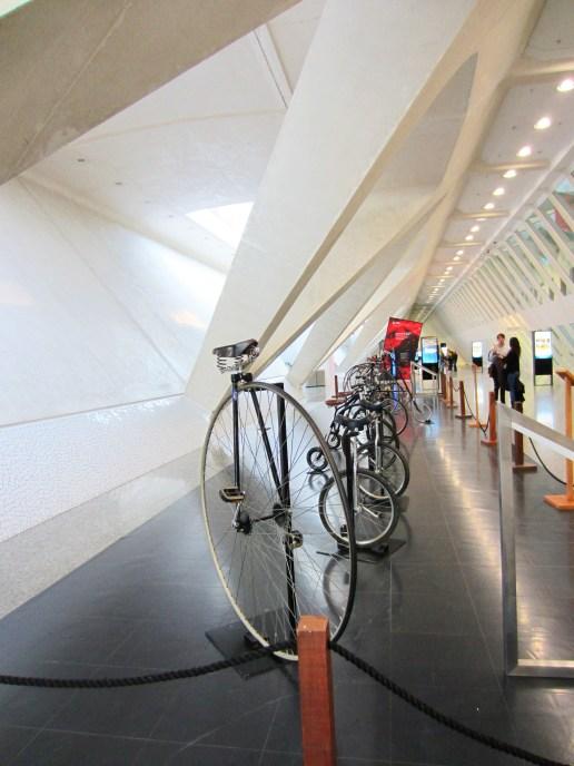 Interno Museo delle Scienze - Piano terra
