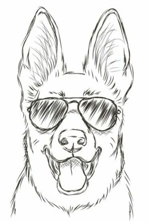 draw cool things easy pencil sketch sunglasses drawings dog simple sketches drawing beginners archzine tutorials dogs face 1001 animals inspiration
