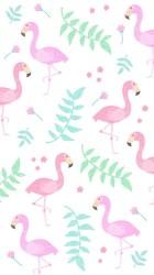 cute backgrounds background girly pink wallpapers screen flamingo flamingos phone amazingly grace leaves desktop laptop spongebob flowers trendy disney iphone