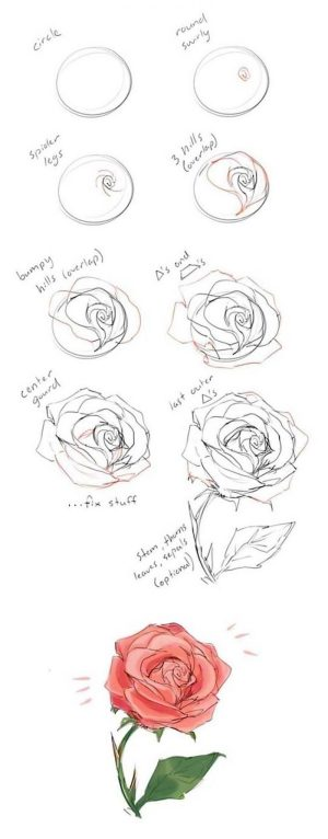 draw step rose drawing flowers diy easy simple tutorial background tutorials sunflower pencil sketch 1001