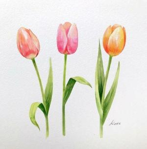 draw flowers easy painting drawings cool simple pink tulips orange drawing yellow watercolor step tutorials colored perfect daffodil perspective