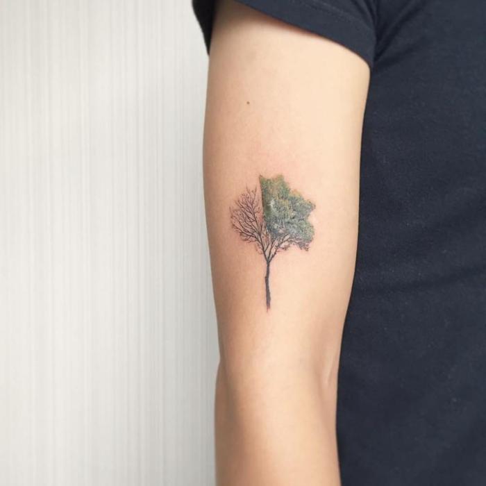 Tatuajes En El Brazo Para Mujer Best Si Te Gustaron Los Tatuajes