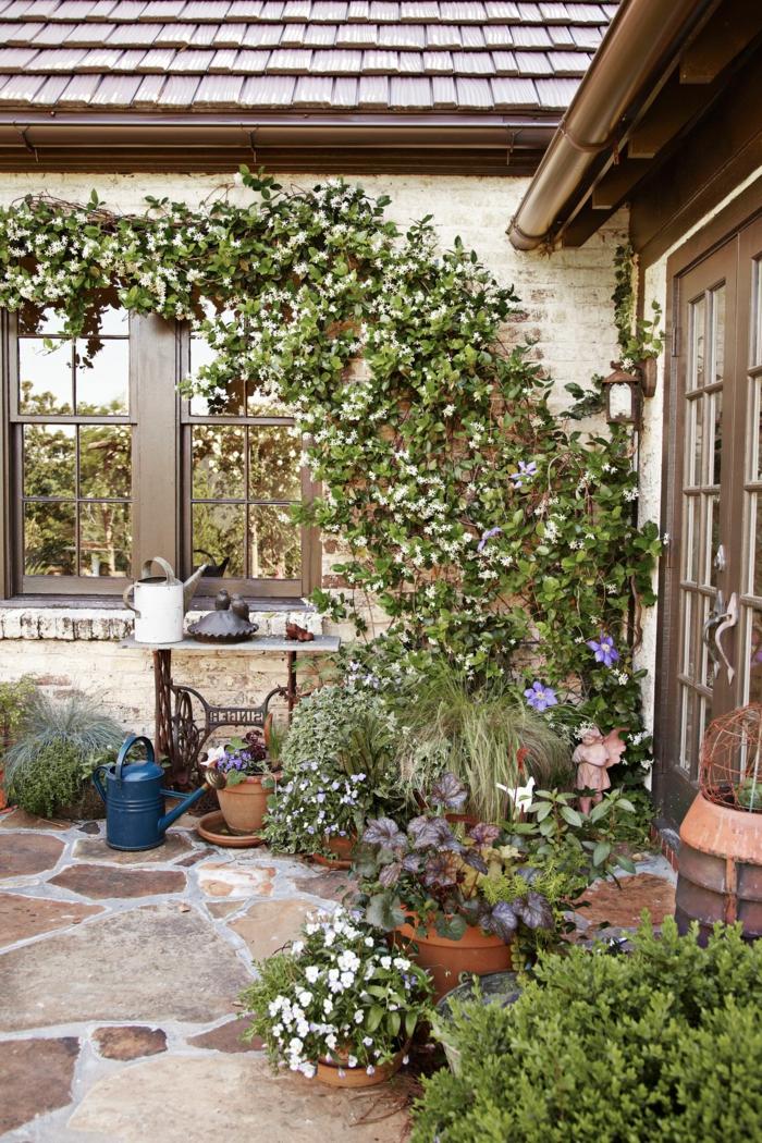 Plantas Para Jardin Exterior Pequeno , Novocom.top