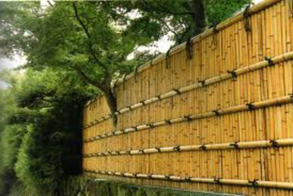 la palissade bambou japonaise