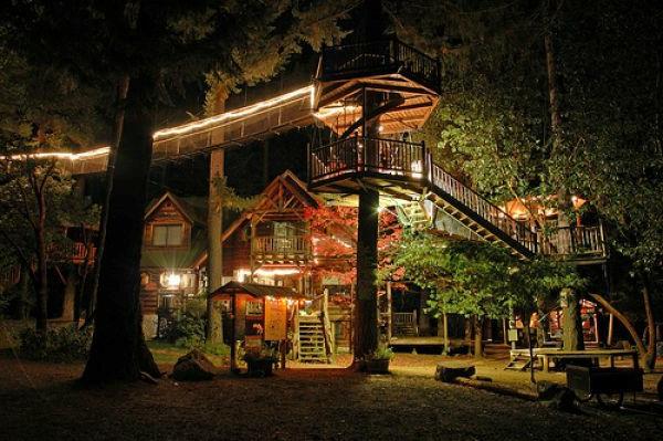 Maison Une Cabane Dans Les Arbres Luxe Nature Et Chic