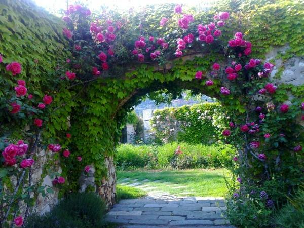 Jardin dt  dcorations de plantes et fleurs remarquables  Archzinefr