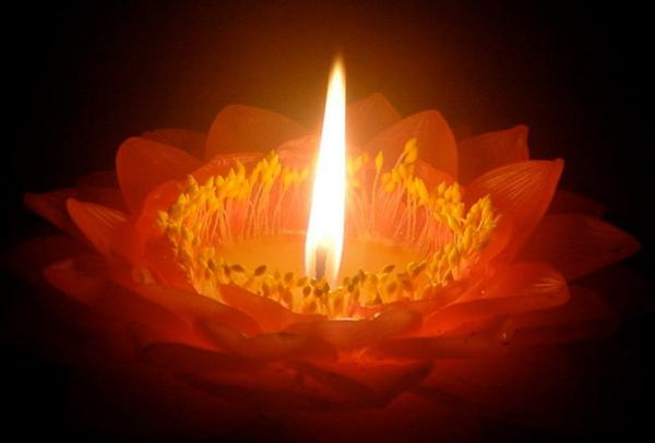Une bougie fleur  source dinspiration et touche d