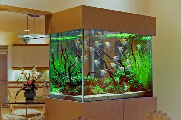 La Dcoration Avec Un Meuble Aquarium
