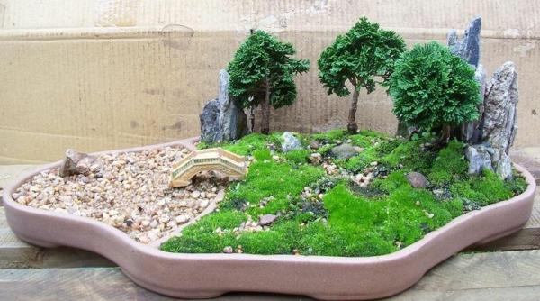 Le mini jardin japonais  srnit et style exotique