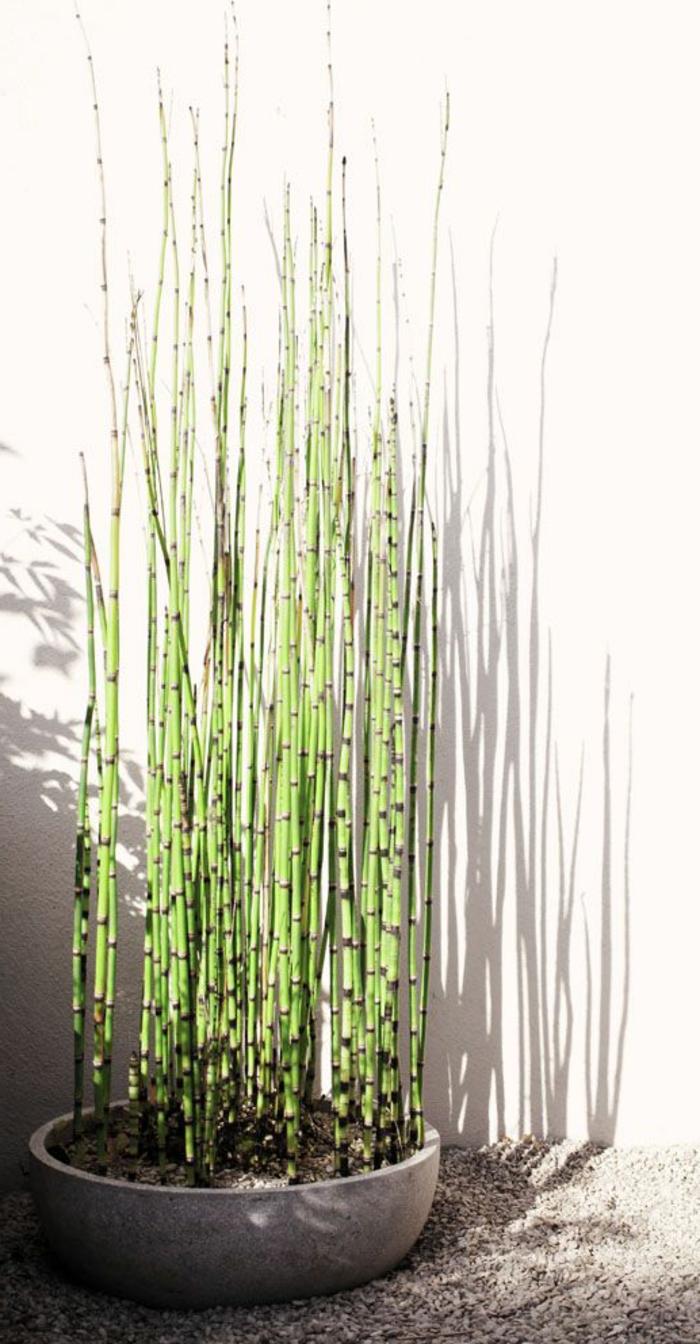 40 pots de fleurs qui vont allumer votre imagination  Archzinefr