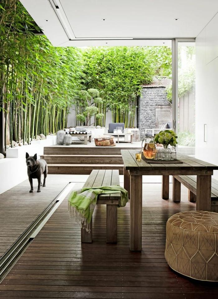 Comment planter des bambous dans son jardin  Archzinefr