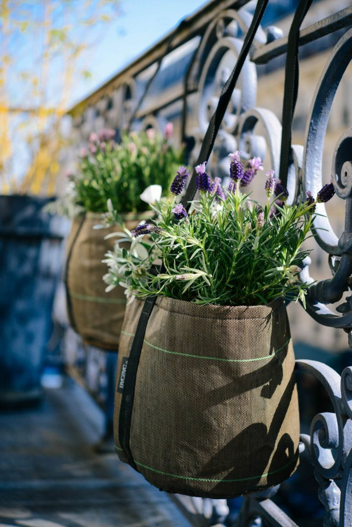 Les plus beaux fleurs de balcon en 47 images
