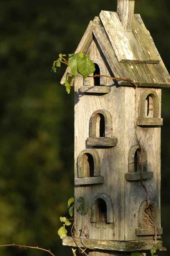 Designs cratifs de cabane  oiseaux  Archzinefr