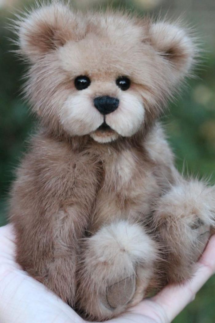 L ourson en peluche  le jouet les plus aim de tous les temps  Archzinefr
