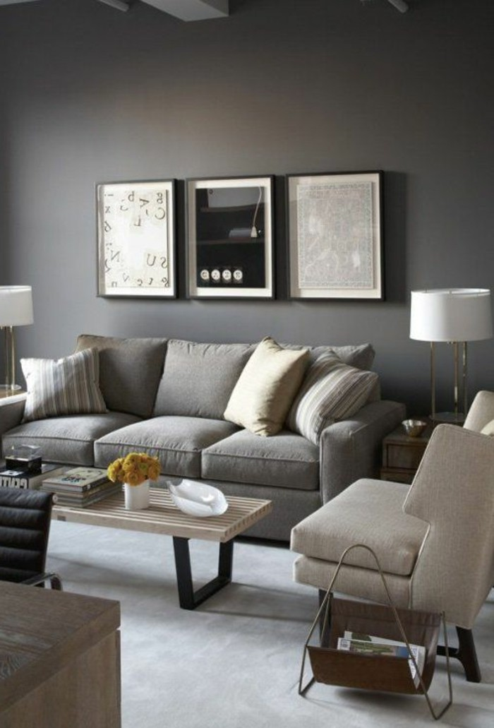 Awesome Salon Gris Clair Et Anthracite Gallery - House ...