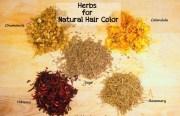 coloration naturelle cheveux