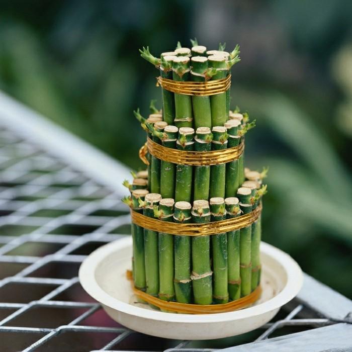 que faire avec des bambous