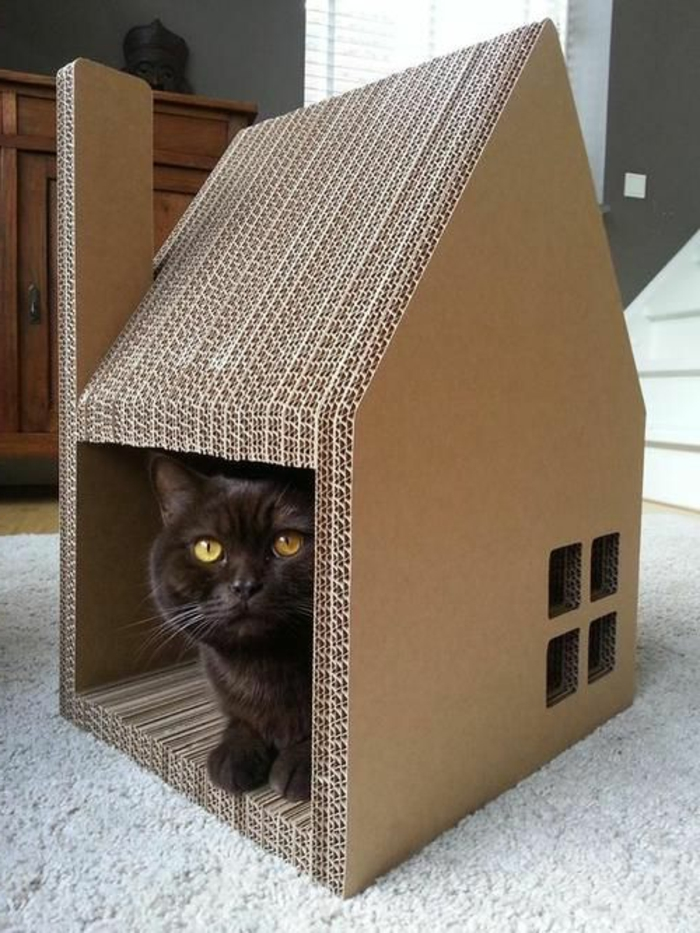 1001 designs captivants de maison de chat en carton