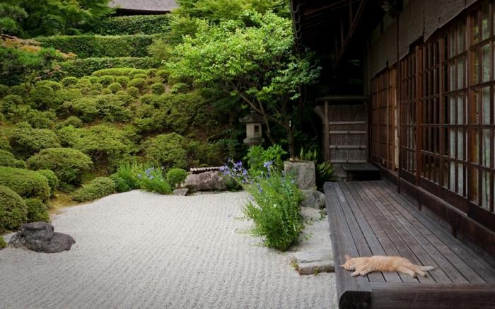 1001 conseils pratiques pour une dco de jardin zen