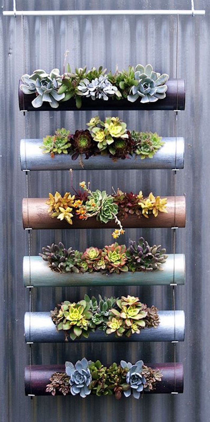 1001 ides  Jardinire dintrieur  cultivez votre petit jardin intrieur