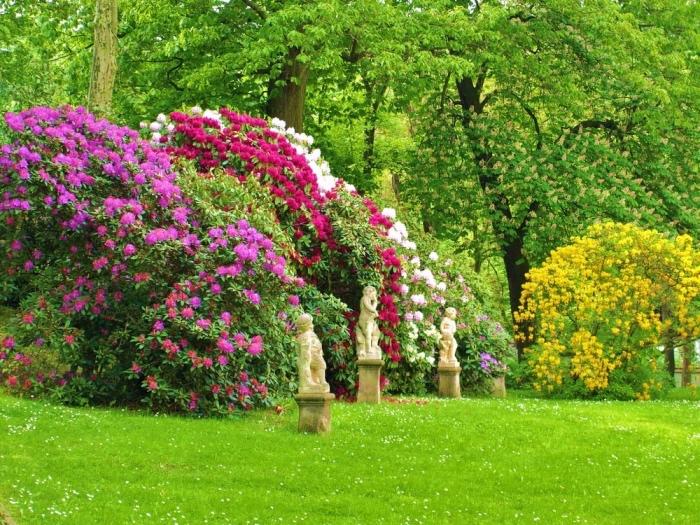 1001  conseils et ides pour amnager son jardin comme un pro