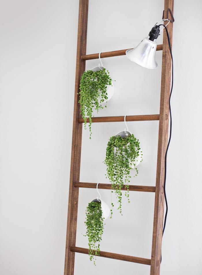 echelle decorative en bois simple avec des lattes en bois et chevilles pots de
