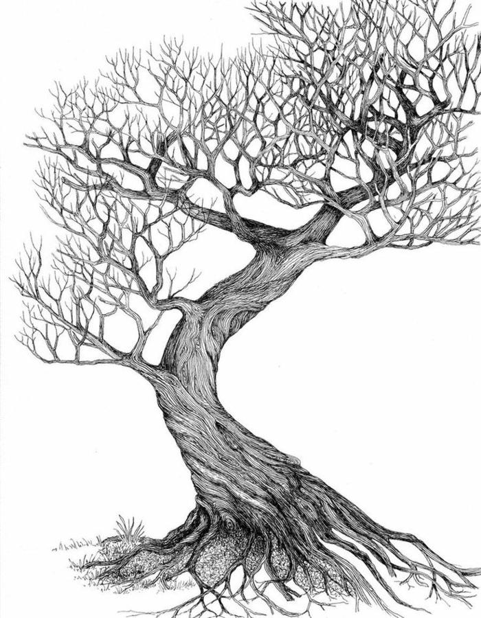 1001 + idées pour dessiner un arbre merveilleux avec exemples