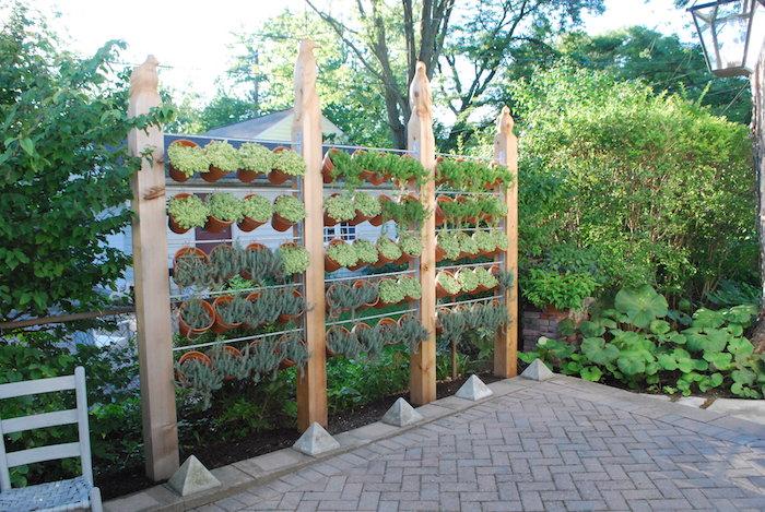 1001 idees brise vue vegetal