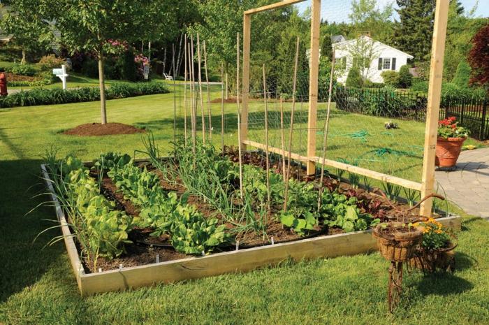 Garten Selbst Gestalten – Siddhimind Info