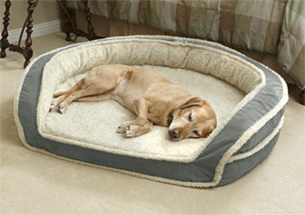 Orthopdisches Hundebett  61 ultramoderne Designs  Archzinenet