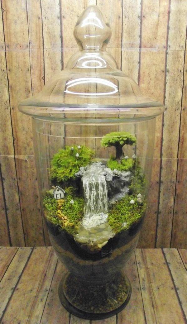 Terrarium selbst bauen oder wie erstellt man eine Mini Pflanzenwelt  Archzinenet