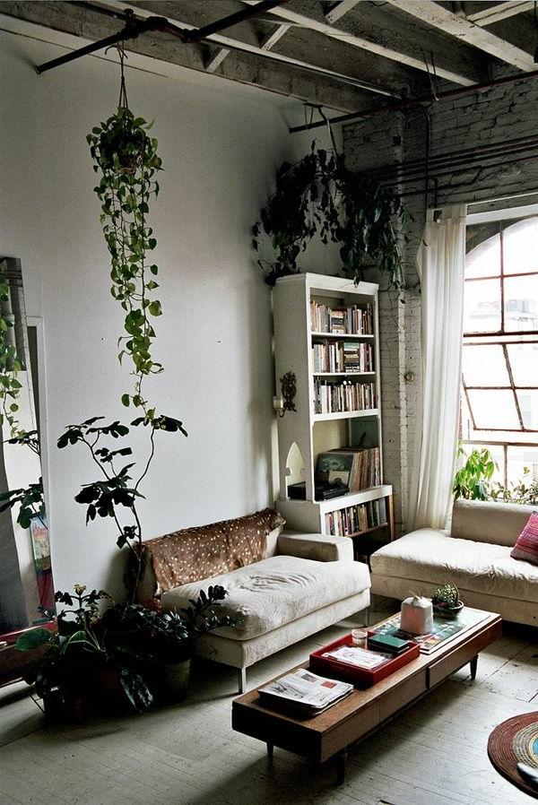 Hngende Zimmerpflanzen knnen die beste Hnge