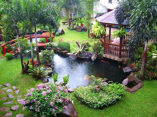 Small Wildlife Pond Ideas