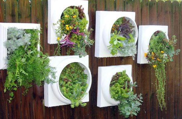 Hngende Pflanzen als Indoor Dekoration  Archzinenet