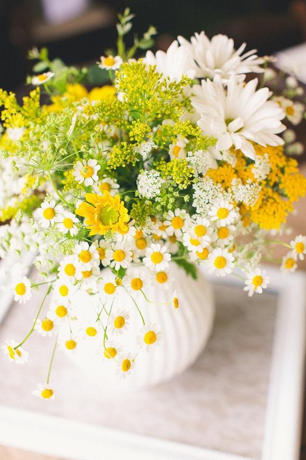Gnseblmchen als wunderschne Blumendekoration