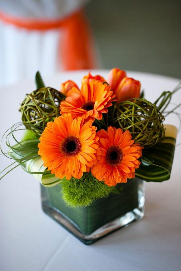 Gerbera  Blume mit vielen schnen Farbvarianten