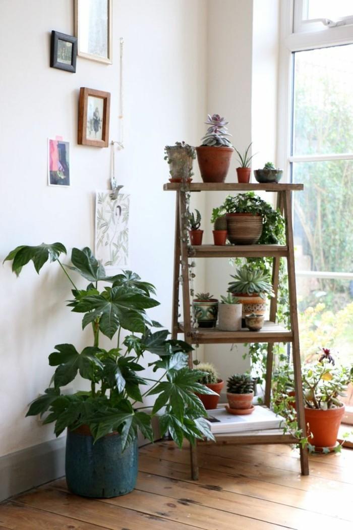 Wohnzimmer Einrichten Pflanzen
