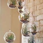 1001 Ideas For Making A Beautiful And Lush Air Plant Terrarium