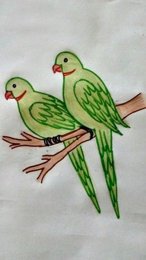 drawings easy drawing draw birds tree parrots simple cool colored branch standing child imagination archzine develop creativity very help pencils