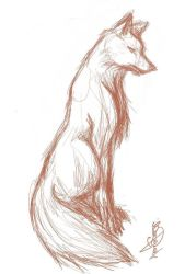 drawings animals animal sketch draw easy pencil fox tail simple step inspiration
