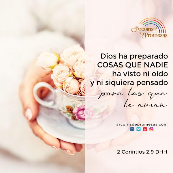 bendiciones que son exclusivas para ti devocionales para mujeres cristianas