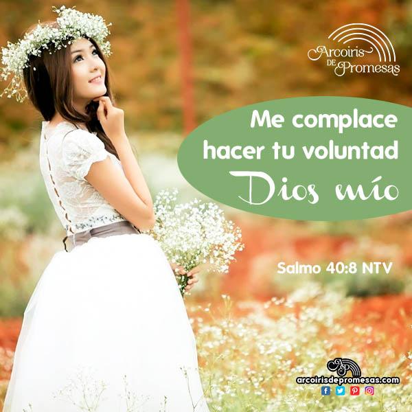 el gozo de obedecer a dios enseñanza para mujeres cristianas