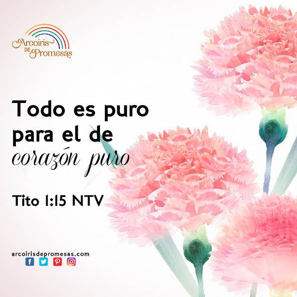 un corazon puro para dios enseñanza cristiana para mujeres