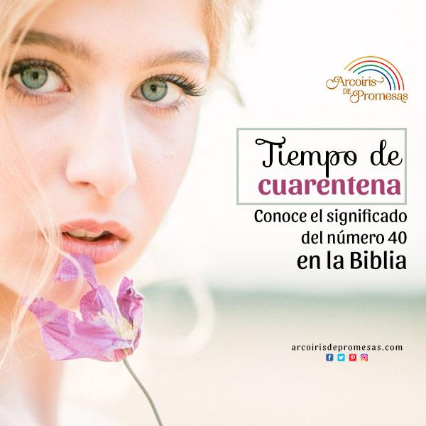 la cuarentena en la biblia enseñanza biblica para mujeres